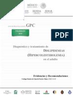 GER Dislipidemia 3
