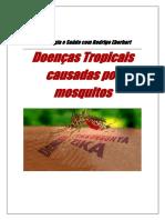 Aedes aegypti e seus  vírus rod eberhart.docx