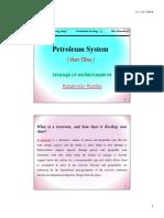 Petroleum System P3