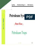 Petroleum System P5