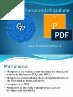 Lecture7_Phosphorus.pdf