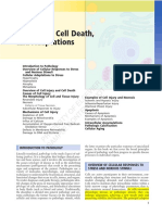 Celldeath Injury Link2