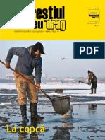 Bucurestiul meu drag - 2013-02