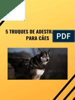 Como Adestrar Um Cachorro Filhote [ PDF Download GRÁTIS ]