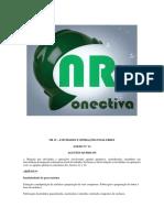 NR-15 ANEXO 13