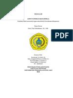 Pemeriksaan Manajemen : Audit Kinerja Manajerial