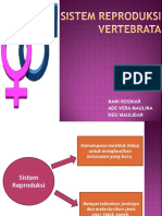 Sistem Reproduksi Vertebrata
