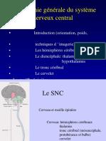 2-Anatomie Generale Du Sn