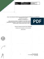 Terminos de Referencia - IGA Puente