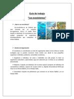 361892973 Guia Ecosistemas 1 Medio