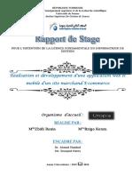 rapport modéle.pdf