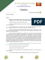 ACF - Curso de Tengui Aula 2.pdf