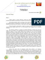 ACF - Curso de Tengui Aula 1.pdf