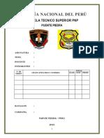 269726644-Marco-Legal-de-La-Pnp.docx