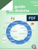 Guide Du Diabete