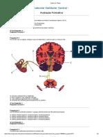 Teste 2 Anatomia vestibular central.pdf