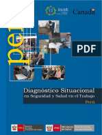 1) Diagnostico de Seguridad y Salud en El Peru (1)