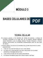 Estructura Celular (EXPOCISIONES)
