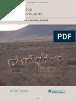 16-camelidos_sudamericanos.pdf