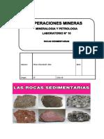 Lab 10 Rocas Sedimentarias