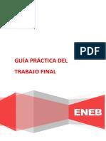 Guía Práctica Del Trabajo Final - MARKETING