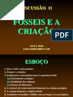 FÓSSEIS E A CRIAÇÃO