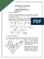 P 2 Cladistica