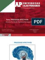 PROCESOS AFECTIVOS1