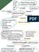 Mapas Mentales Ciencias Naturales