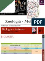 Zoologia Animais.pdf