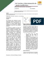 129564057-Extraccion-de-Caseina.docx