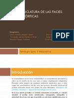 Nomenclatura de Las Facies Metamórficas-1_338-1