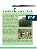 Willow silage.pdf