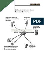 245114740 Resumen PSU Biologia 1 Preuniversitario Pedro de Valdivia Año 2013
