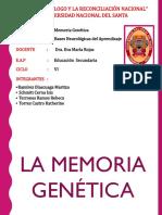 Bases Neurologicas (1)