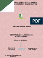 CONFERENCIA 5 Parámetros Biológicos de Los Hongos y Nematodo