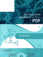Bioethanol From Algae