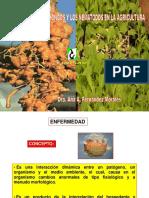 CONFERENCIA 2 Importancia de Los Hongos y Nematodos en La Ag