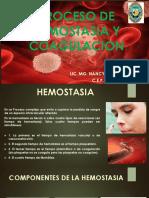 Proceso de Hemostasia y Coagulacion