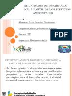 Desarrollo regional a partir de los servicios ambientales o recursos naturales