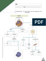 fichas de biologia.pdf