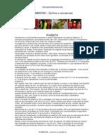 Apostila - PTBR - Culinária - Pimentas- Plantio, cuidados e conservas.pdf
