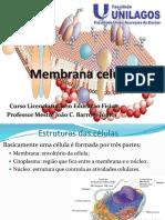 Aula 2 Membrana Celular