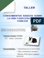 Ponencia Sobre Conejo