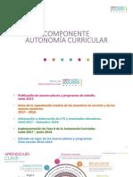 AutonomiaQro.pdf