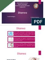 clasificación de diarrea
