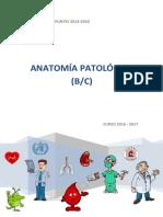 Anatomia Patologica Catedra b (1parte y 2 Parte) Def