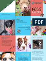 dogsdayoutbrochure