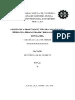 ULTIMO INFORME DE GEO.docx