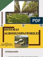 SISTEMAS AGROSILVOPASTORILES